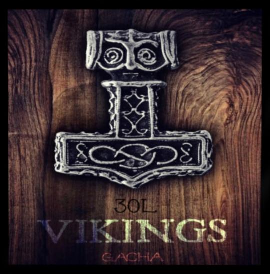 Era of Viking Gacha Fair