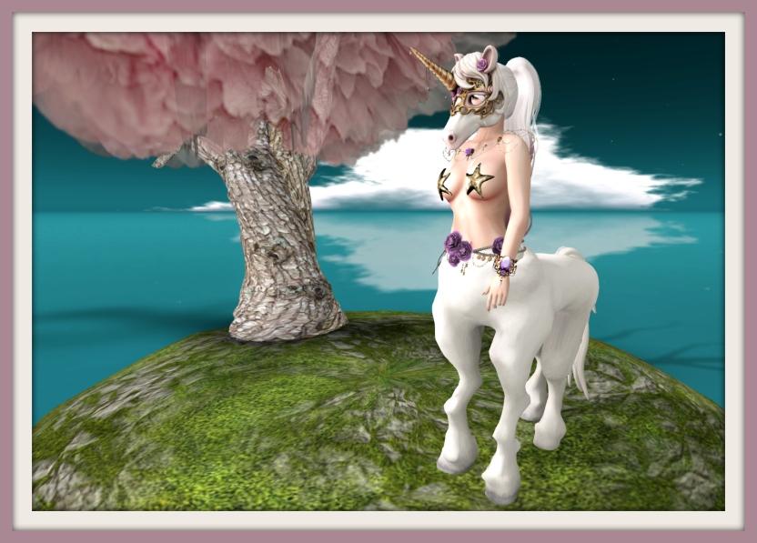 1707 pony